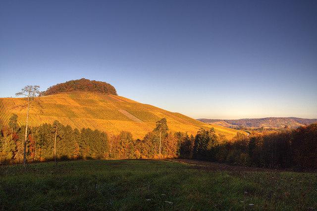 Forstberg in der Herbstsonne