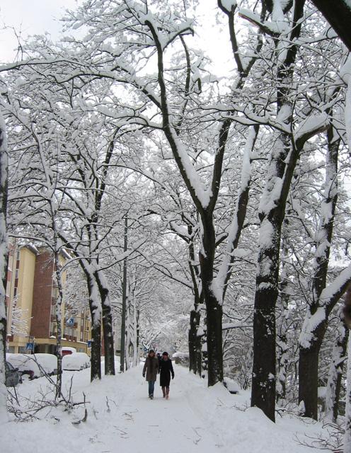 Zeppelinstraße im Schnee