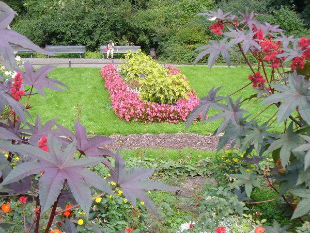 Blumen im Tiergarten
