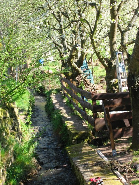Kleiner Bach in St. Martin (Small stream in St Martin)