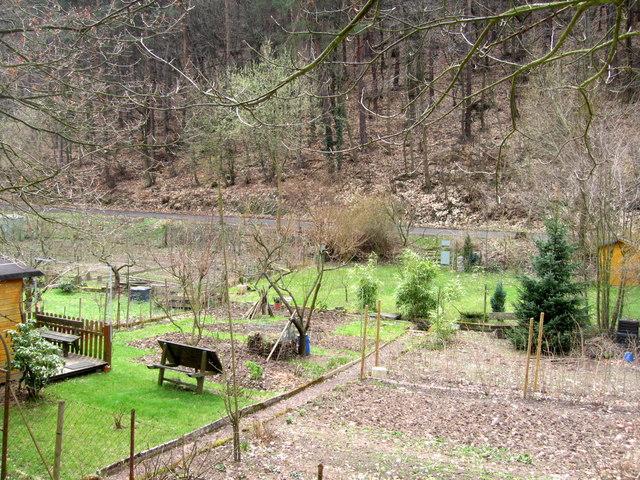 Die Gärten zwischen Im Tal und Hainstraße