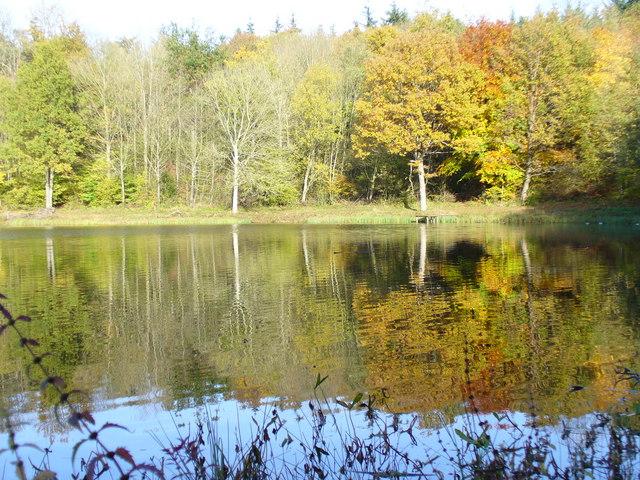 Herbst an der Windsborn-Kratersee