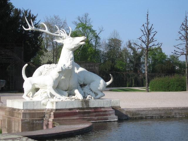 Hirsch und Jagdhund