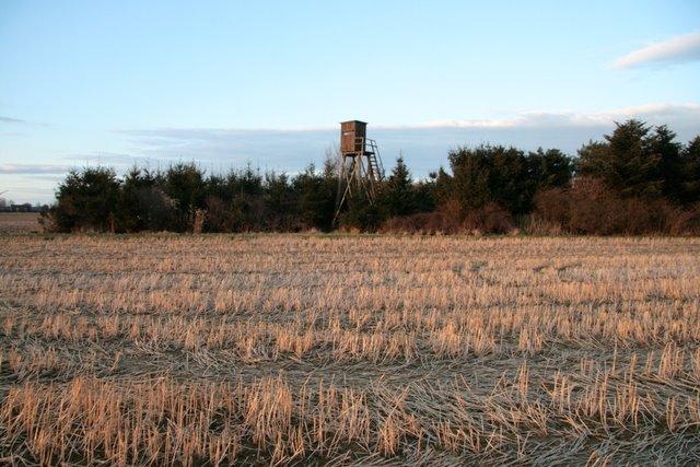 Hochsitz mit Blick über die Felder