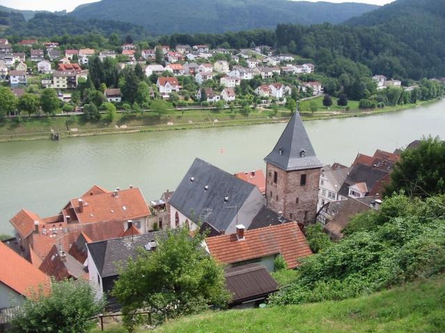 Foto des Neckars vom Schloss Hirschhorn