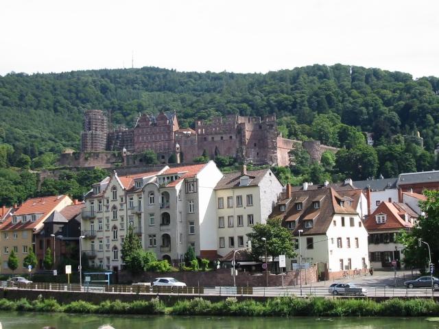 Das Schloss vom Neckar-Fluss