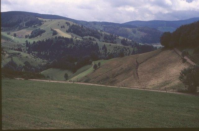Milchbuck und Sittener Berg von  Giesshubel