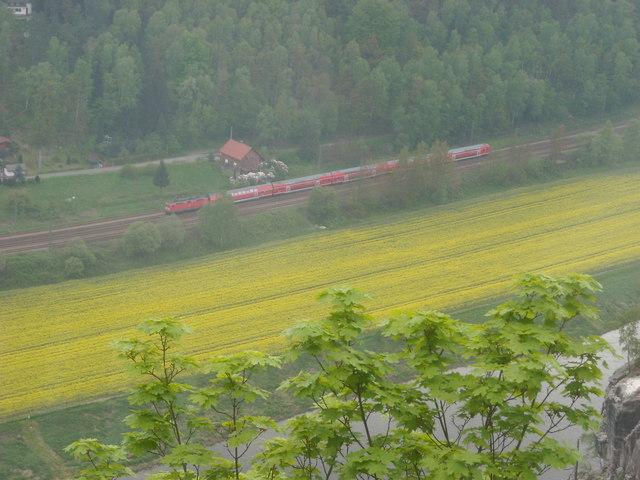 Rathen: Blick von der Basteiaussicht auf die Elbtalbahn (Passenger train approaches Oberrathen)