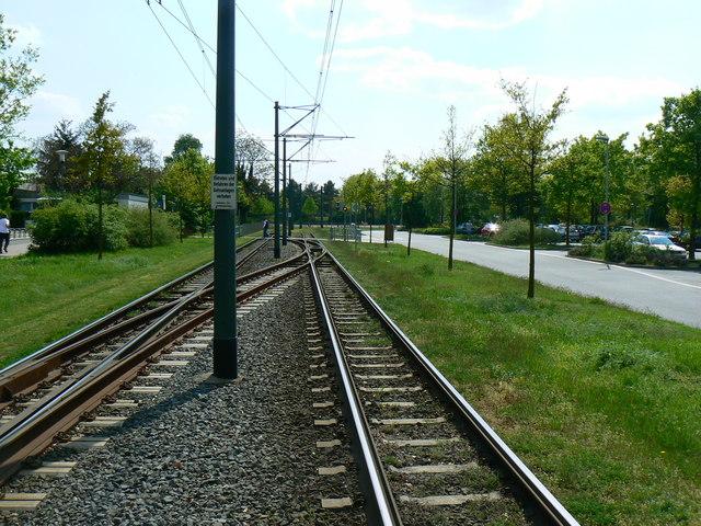 Strassenbahnschienen Alsfelder Straße, Darmstadt (Tramway, Alsfelder Straße, Darmstadt)
