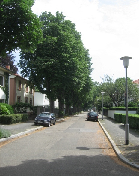 Spinozastraße