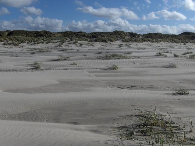 Nordstrand und Dünen im Osten Juists