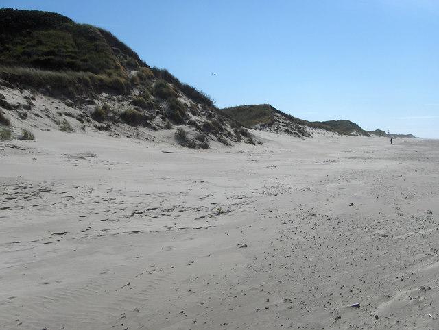 Dünen am westlichen Nordstrand Juists