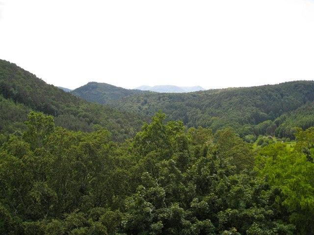 Naturpark Pfälzerwald
