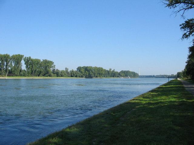 Rhein bei Neuburgweier
