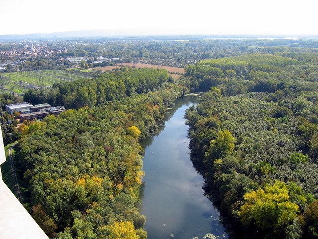 Altrheinarm beim Rheinhafendampfkraftwerk Karlsruhe