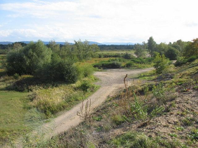 Uferzone Epplesee