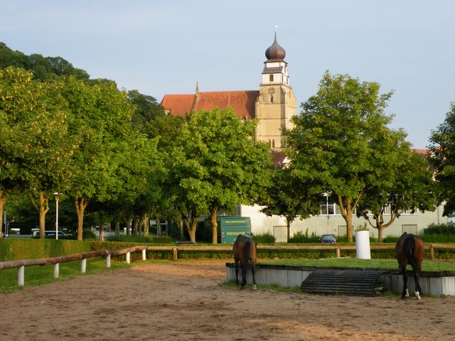 Horses and the Glockenmuseum