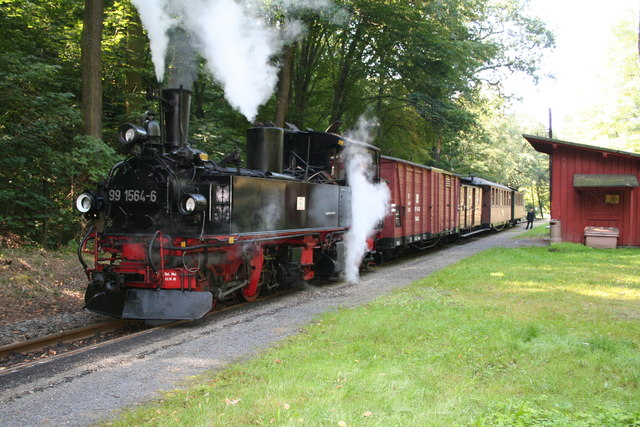 Narrow gauge train at  Friedewald, near Dresden