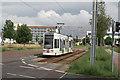 UUT0644 : Dessau, Kastanienhof von Alan Murray-Rust