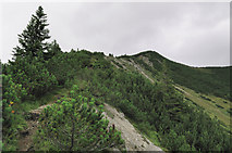Blick über den Südgrat zum Gipfel des Auerspitz