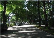 UPE4484 : Dünenweg - Boltenhagen von Sebastian und Kari