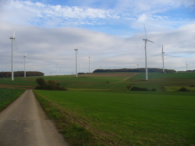 Feldweg nach Hageltor (Road Through Fields to Hageltor)