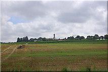 Felder bei Berg im Gau
