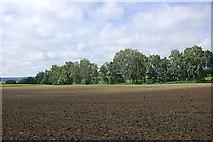 Felder bei Alteneich