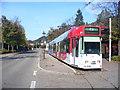 UMU1412 : Freiburg - Endstation, Günterstal (Guenterstal Tram Terminus) von Colin Smith