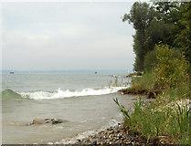 TNT2578 : Ufer bei Immenstaad von Hansjörg Lipp