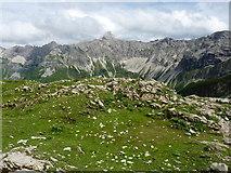 Bergwiese am Weg vom Laufbacher Eck zum Himmelecksattel