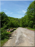 Wanderparkplatz Kohlgrube im Wald zwischen Gönningen und Gomaringen