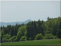 Waldrand westlich von Dußlingen