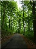 Roßberg-Steige