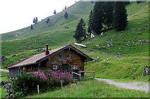 TPT9984 : Hütte auf der Neuhüttenalm by Ulrich Meier