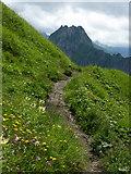 Laufbacher-Eck-Weg mit Blick zur Höfats