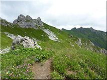 Laufbacher-Eck-Weg zwischen Schochen und Lachenkopf