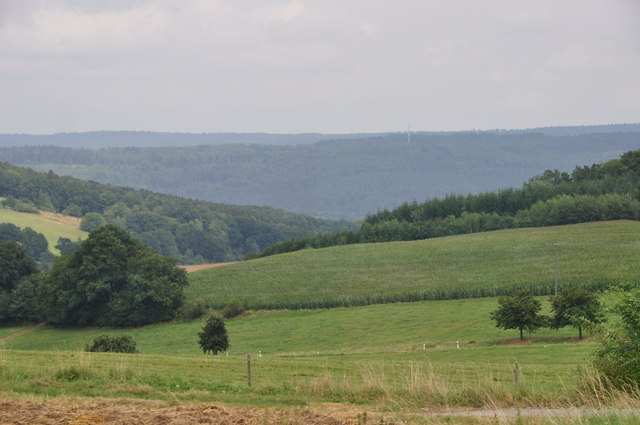 Odenwald : Grassy Field & Countryside