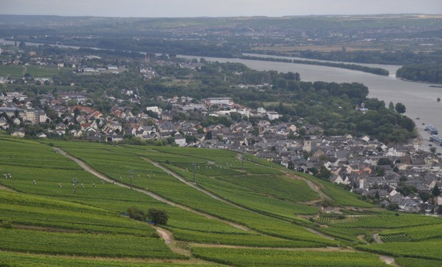Rüdesheim am Rhein : Vineyards & Rhine Valley