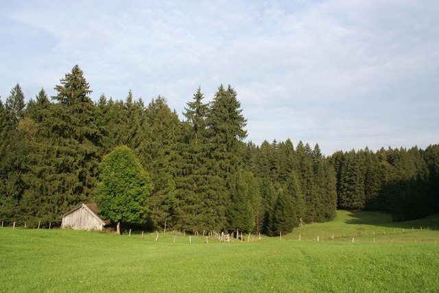 Farmland and woodland near Kappel