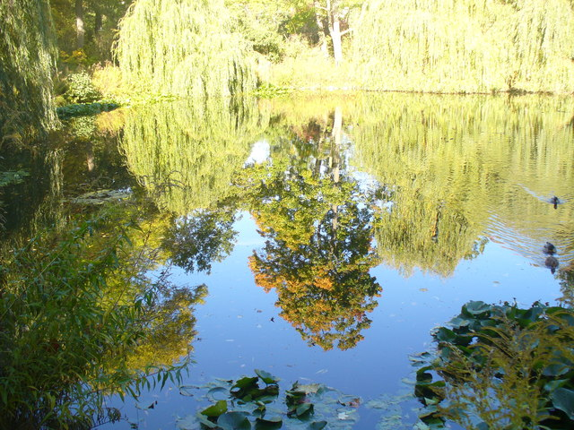 Spiegelung auf dem Fontaneteich (Reflections on the Fontane Pond)