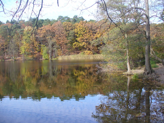 Krumme Lanke - Herbst im Grunewald (Autumn in the Grunewald)