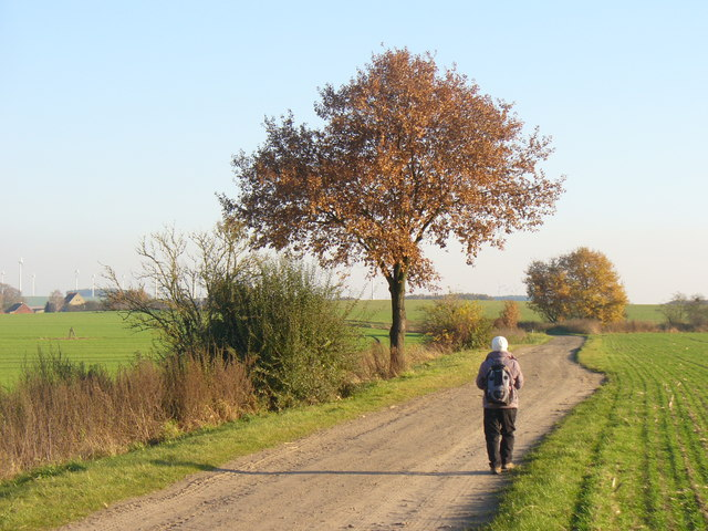 Jueterbog - Feldweg (Footpath Between Fields)