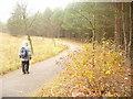 UUU7212 : Berliner Mauerweg - Luisenberg von Colin Smith