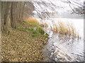 UUU7115 : Gross Glienicker See von Colin Smith