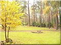 UUU7809 : Waldfriedhof Zehlendorf (Zehlendorf Woodland Cemetery) von Colin Smith