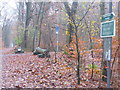 UUU7608 : Kleinmachnower Mauerweg (Kleinmachnow Wall Way) von Colin Smith
