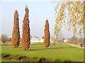 UUU8046 : Schlosspark Oranienburg (Oranienburg Palace Park) von Colin Smith