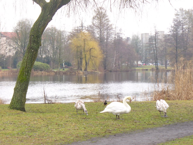 Spandau - Suedparkteich (South Park Pond)