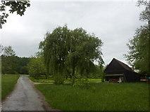 Weg bei der Schleifmühle bei Gomaringen